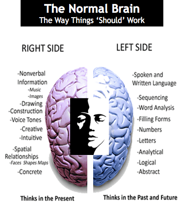 rightandleftbrain   Southwest Brain Performance Centers